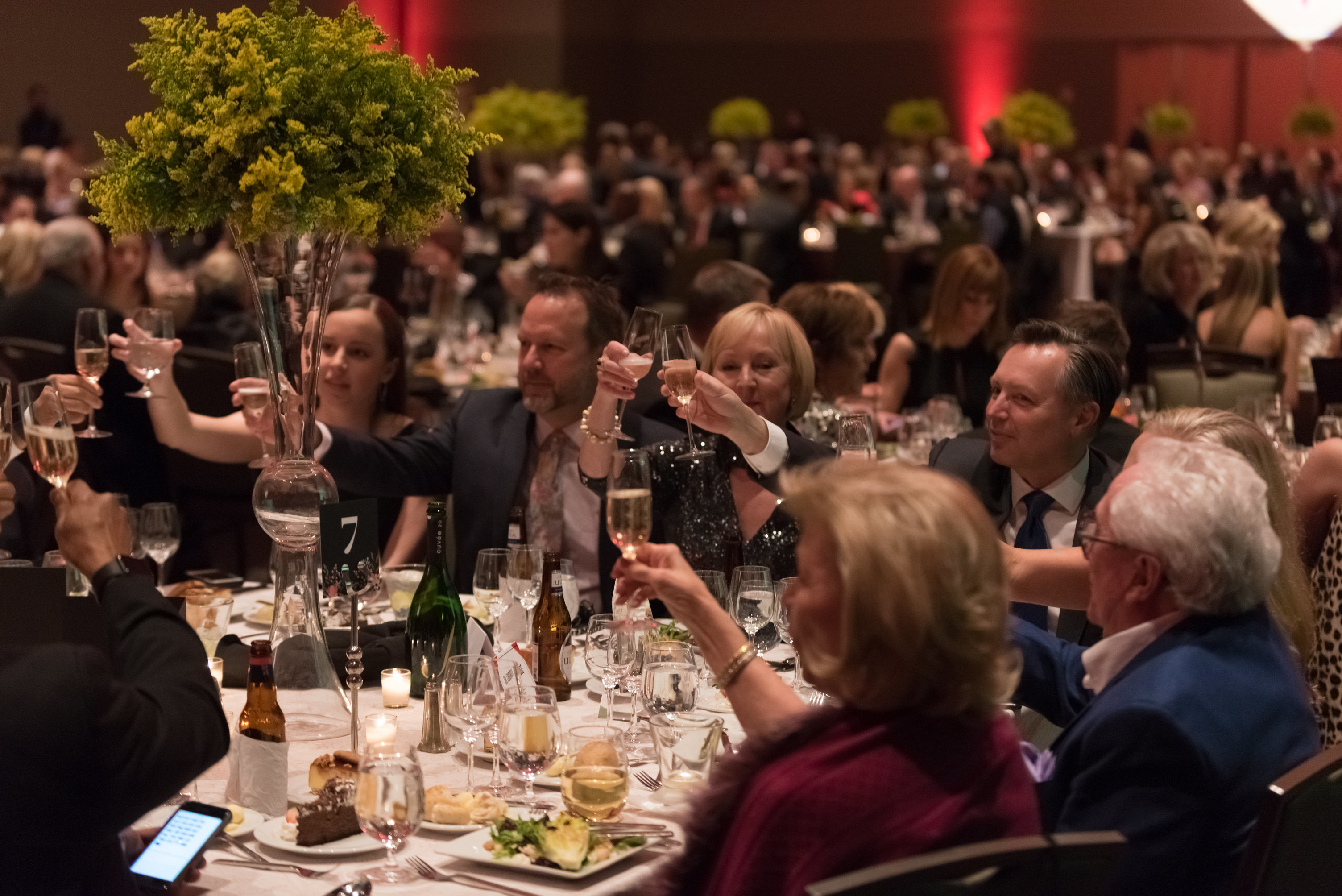 Heart Ball guests toasting